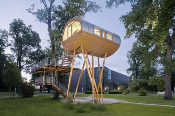 tree house1
