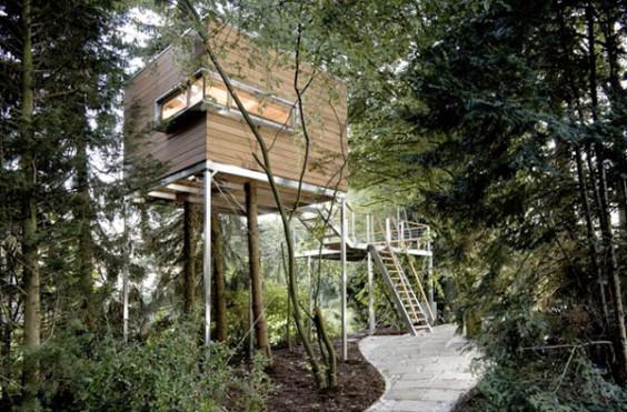 tree house3