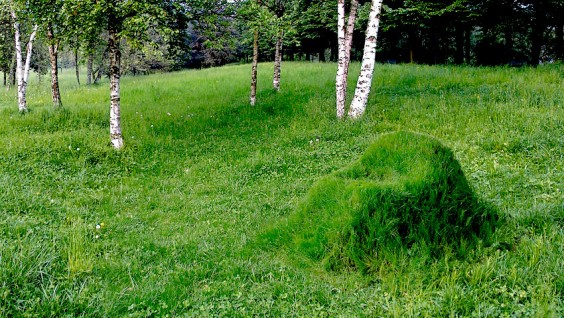Terra-Grass-Armchair-made-from-Cardboard-Frame-Soil-and-Grass-Seeds