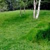 「芝生&クラフト紙」で「芝生椅子を育てる」簡単3ステップ