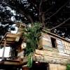 リサイクル木材で建てた「迷路のような遊び心」満点なツリーハウス