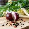 【昆虫食、ミドリムシを食べる?】食糧危機へ備える新たな食の可能性